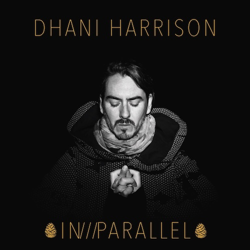 """DHANI HARRISON """"IN///PARALLEL"""""""
